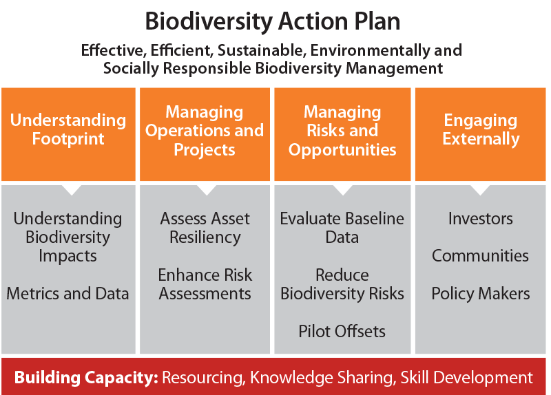 biodiversity action plans Biodiversity action plan the hawke's bay biodiversity action plan 2017-2020 sets out how, by working together, we begin to implement the five key objectives of the hawke's bay biodiversity strategy it is the first of many plans to come.