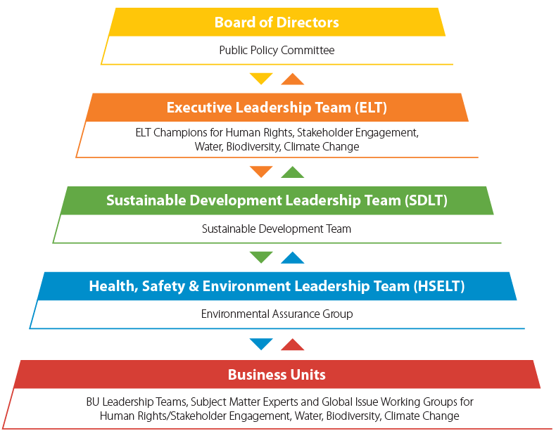 Sustainability governance graphic