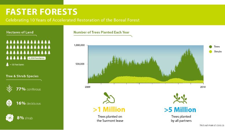 Faster Forests Infographic