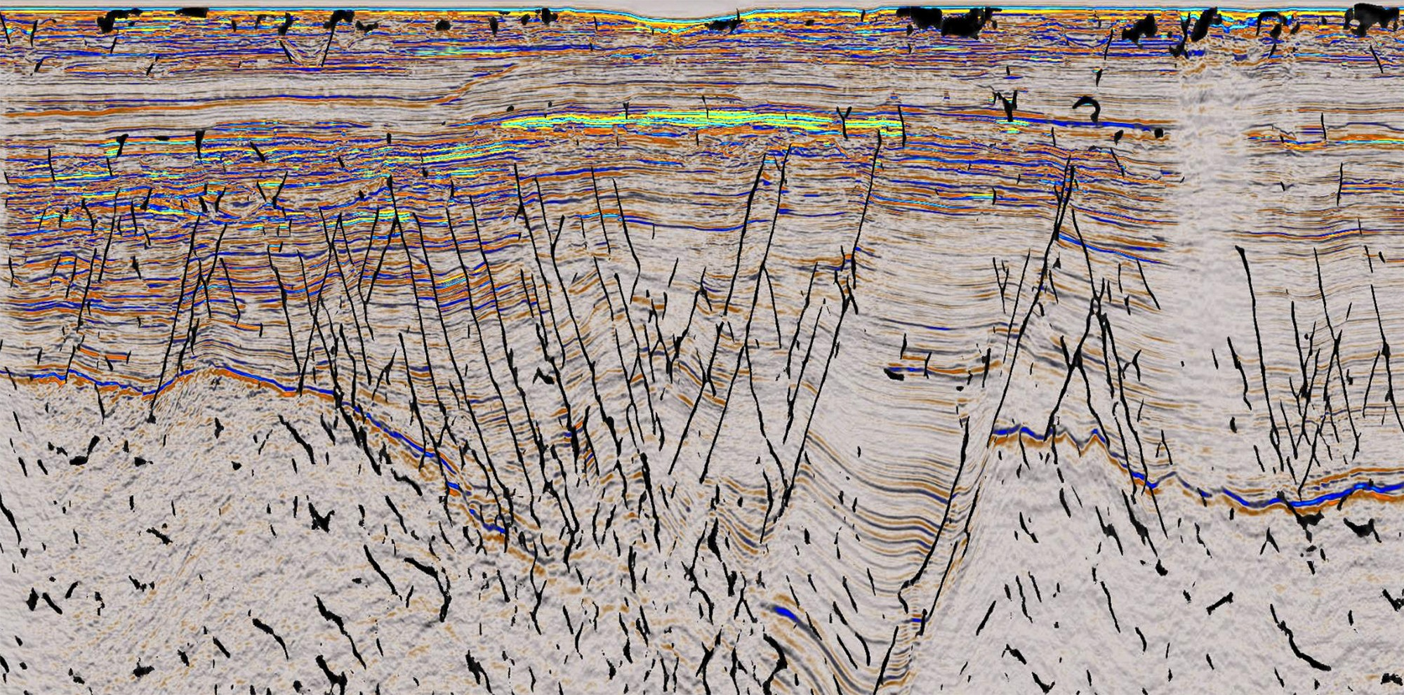 Screen view of seismic data