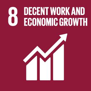 SDG-8