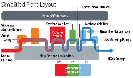 Simplified Plant Layout